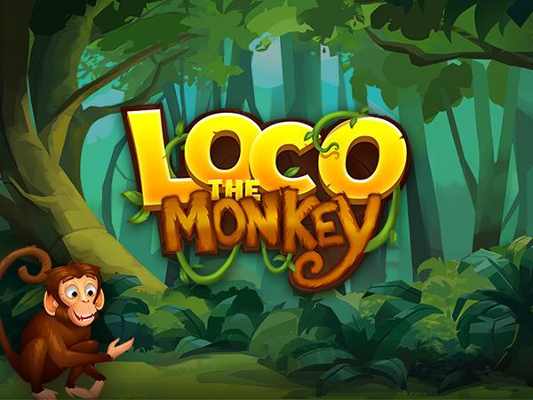 Loco the Monkey