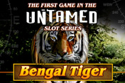 [Untamed Bengal Tiger] Games