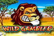 [Wild Gambler]